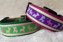 Webband-Terrier-grün-und-lila