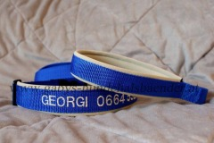 besticktes-Halsband-Georgi-2