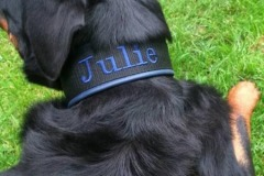 Rottweiler-Julie-besticktes-Halsband